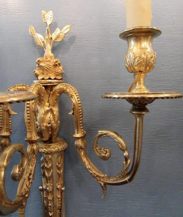 Pair of 19th Century French Régence Bronze Doré Sconces with Grapes
