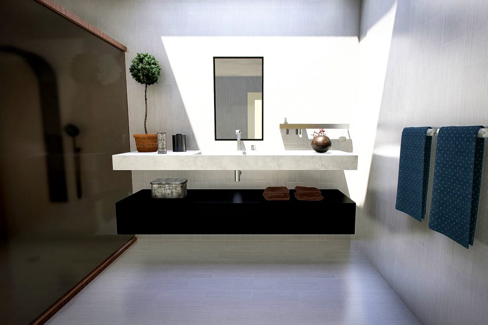 Black And White Bathroom Painting in Plano Texas